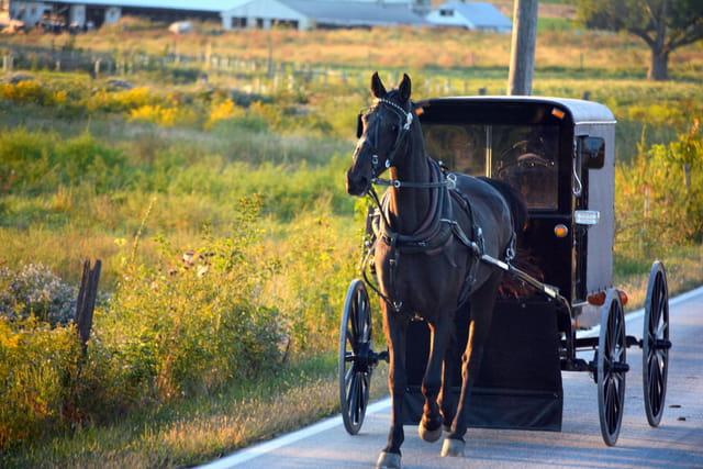moyen de transport amish