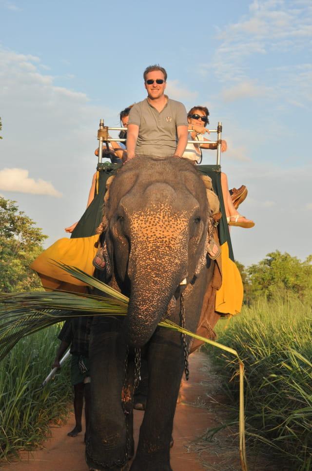 Moyen de transport éléphantesque