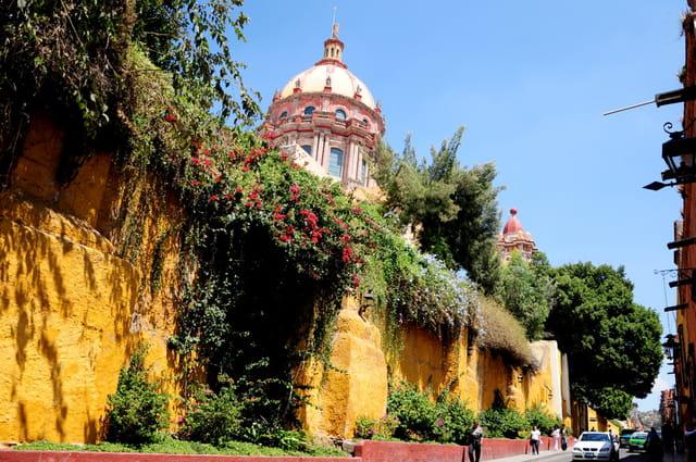 Mur fleuri à San Miguel