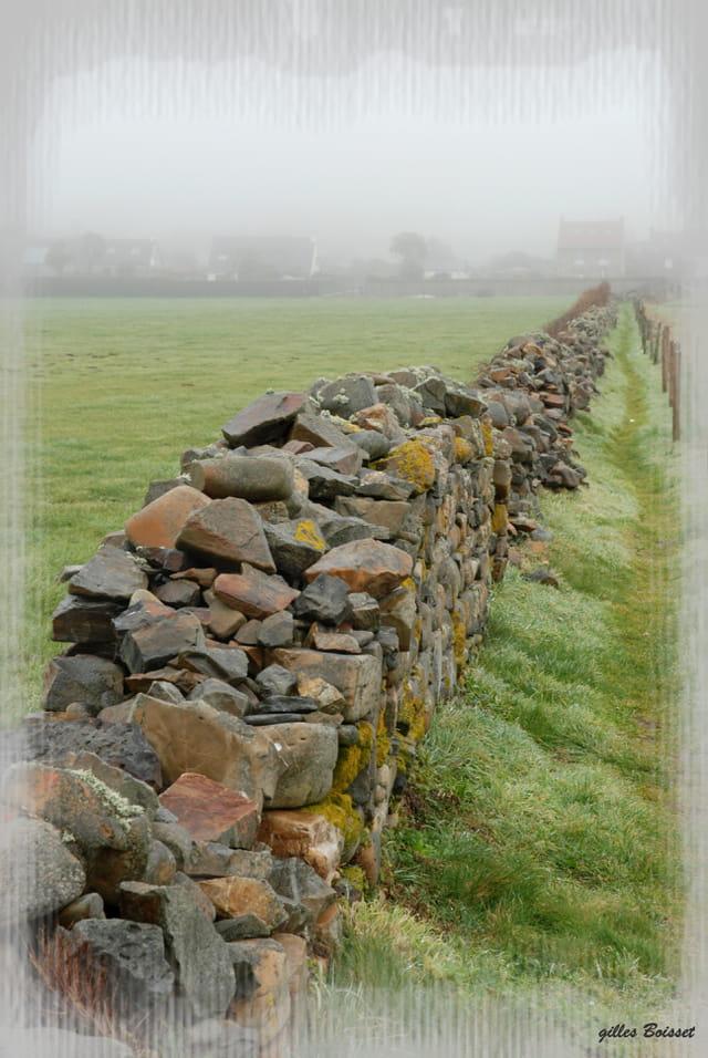 muret de pierres sèches...humide
