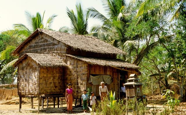 murs de bambou et to t de chaume par alice aubert sur l. Black Bedroom Furniture Sets. Home Design Ideas