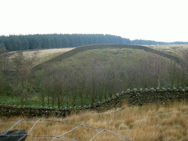Murs du yorkshire