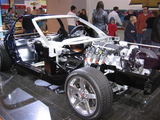 shows Corvette nude