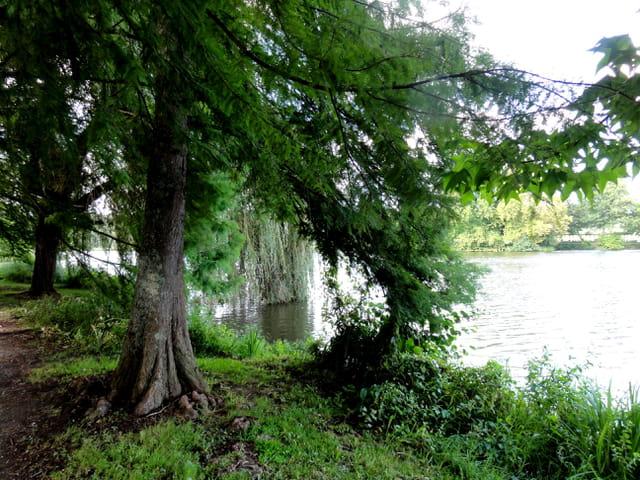 Nature en ballade
