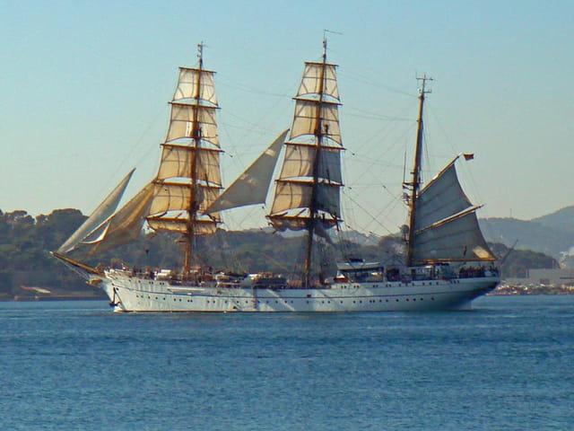 Navire-ecole marine allemande