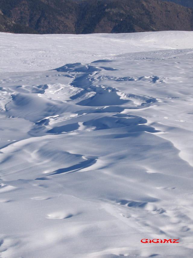 Neige au col de la Couillole