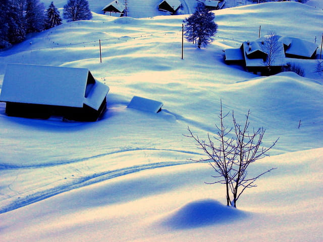 Neige à Engelberg