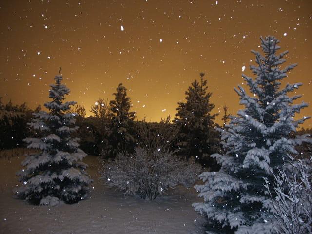 Neige dans la nuit