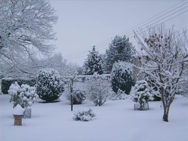 Neige de décembre dans la campagne de Foulognes (calvados)