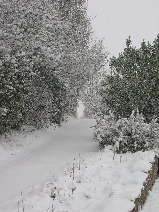 Neige de janvier