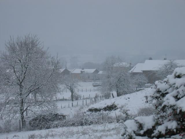 Neige et brume sur la campagne