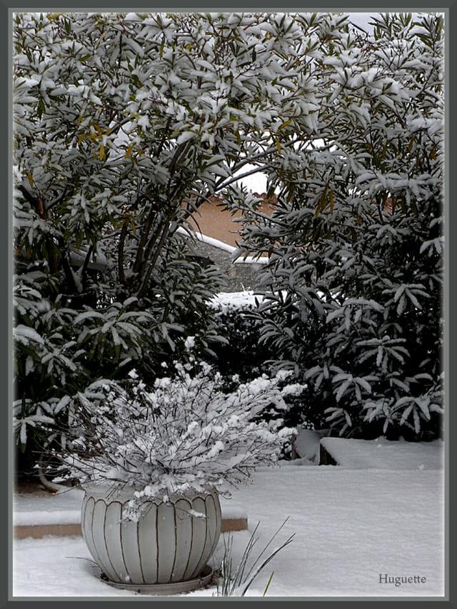 Neige le jardin