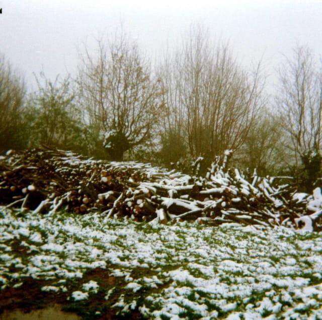 Neige tardive d'avril