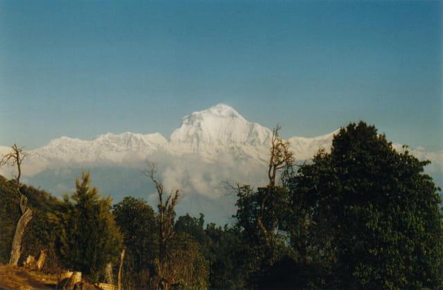 Népal Magique