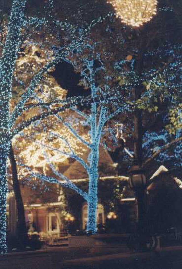 Noel à Central park