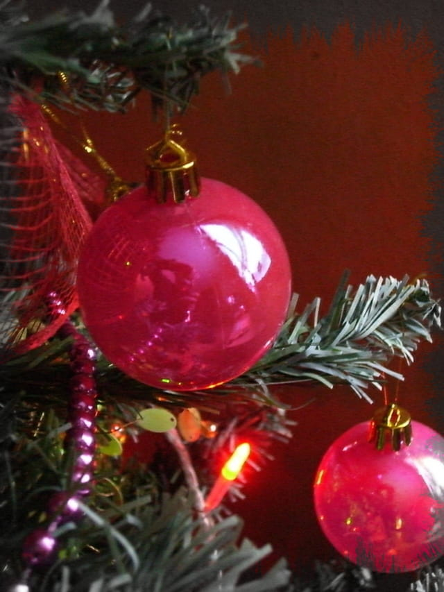 Noël au sapin