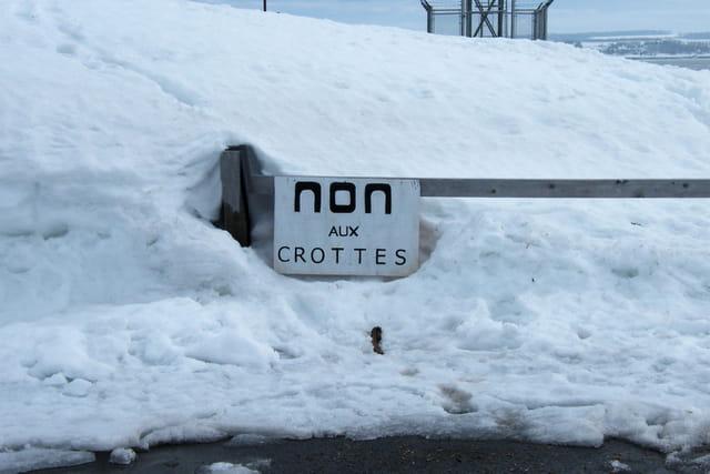 Non aux crottes