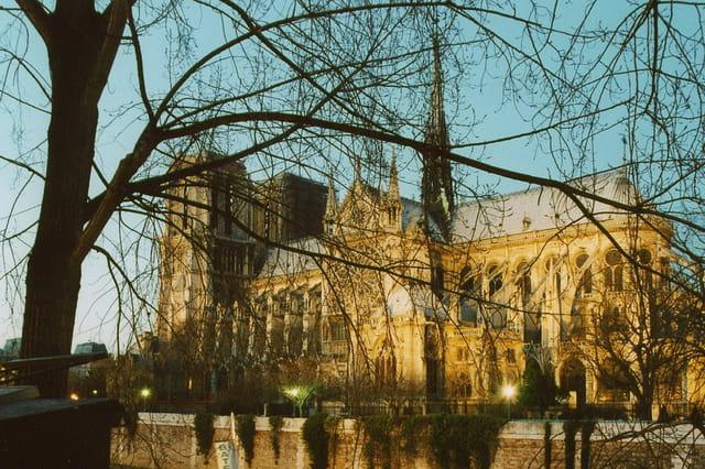 Notre-Dame depuis Q. de Montebello
