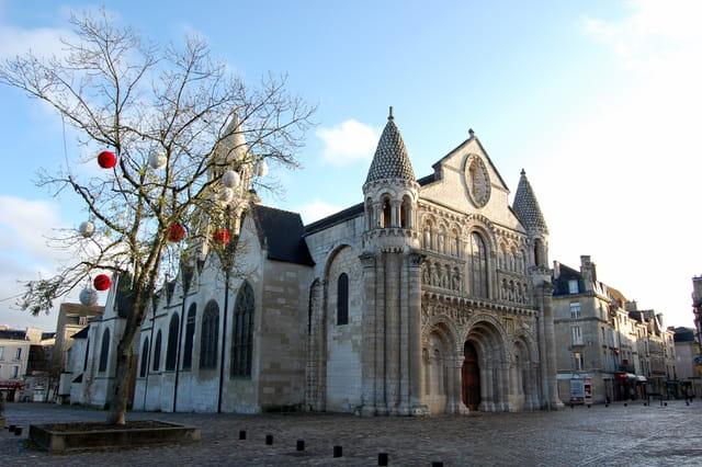 Notre Dame et l arbre de noël