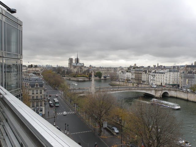 Notre-Dame et la l'Ile de la Cité