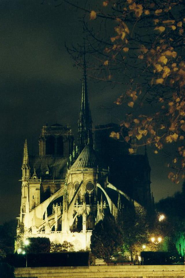 Notre-Dame vue du quai d�Orléans