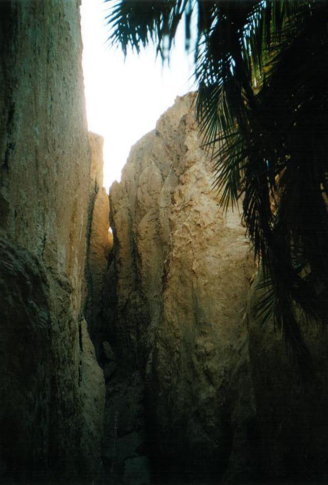 Oasis montagne