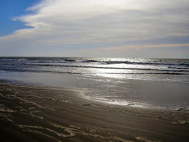 Océan argenté