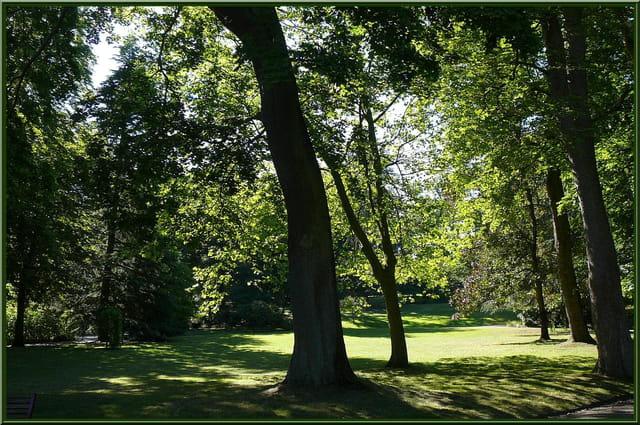 Ombre et lumière au jardin botanique - 8 par Jacqueline ...