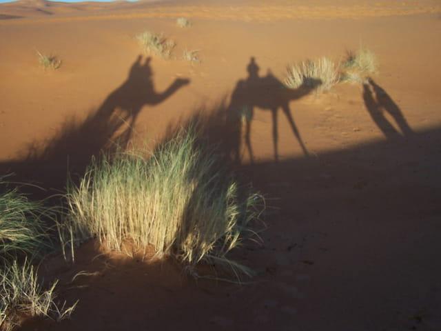 Ombre sur les dunes