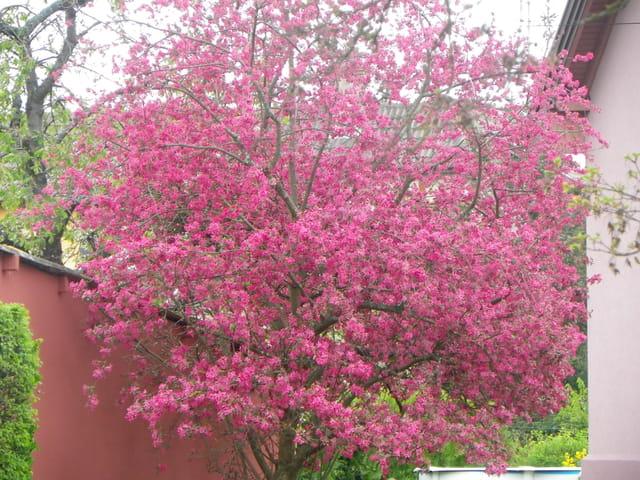On sent le printemps arriver