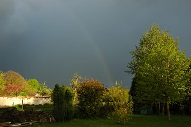 Fin d'orage dans mon jardin