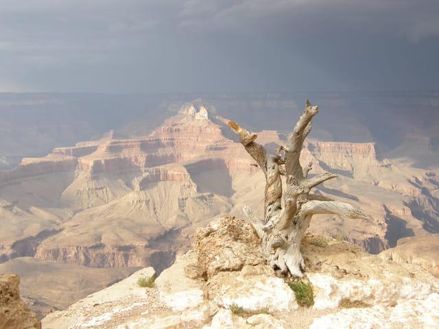 Orage sur grand canyon