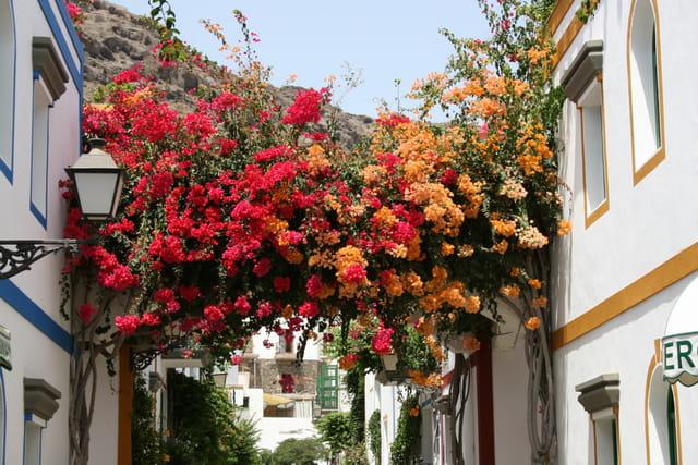 Ornement de fleurs