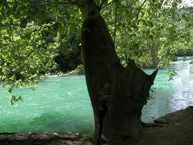 Paisible petite rivière