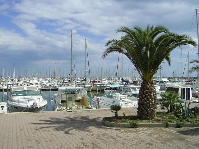 Palavas - Port