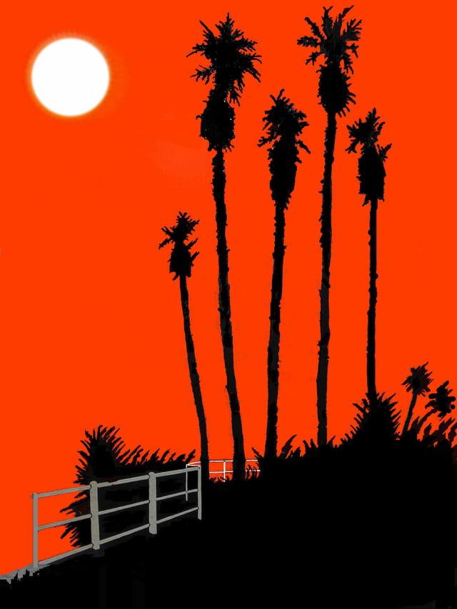 Palm oranje