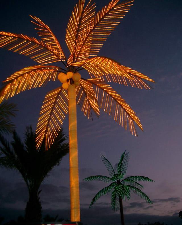 Palmier de Noël