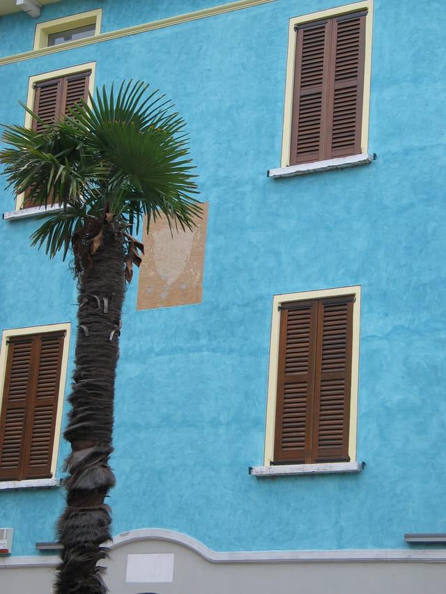 Palmier et façade colorée à Sirmione