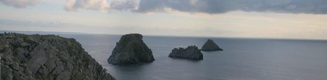panoramique des tas de pois