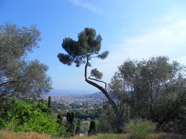 Panoramique sur Nice (4)