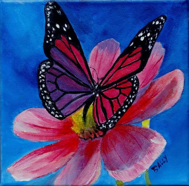 papillon et fleur par Claude BALLY sur L'Internaute