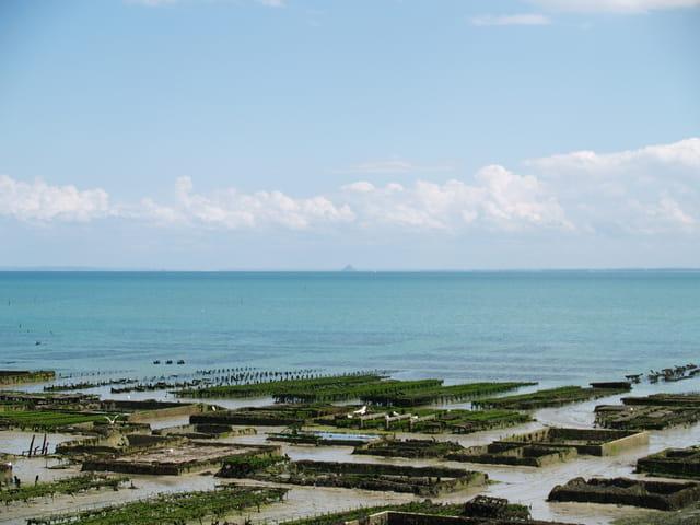 Parc à huîtres de Cancale