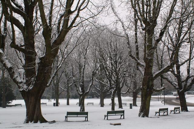 Parc barbieux sous la neige