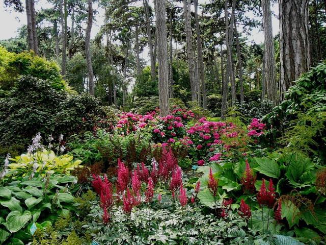 Parc floral de Vincennes en Juillet