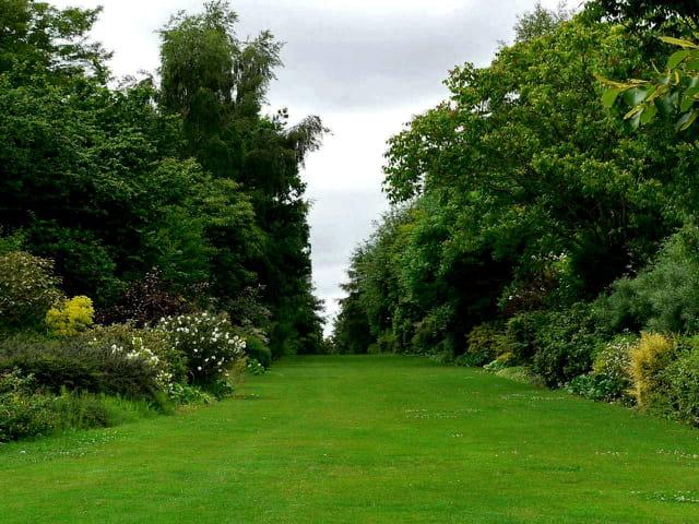 Parc floral, la colline aux oiseaux