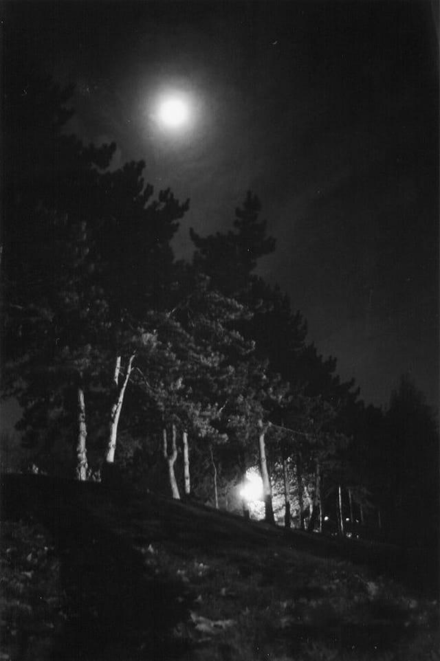 Parc Georges-Brassens sous la lune