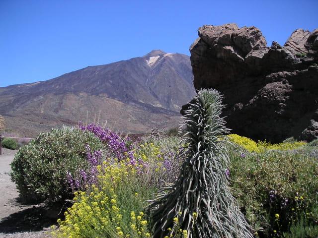 """Parc """"los roques"""", pic du teide"""