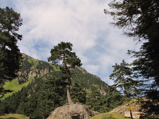 Parc National des Pyrénées.
