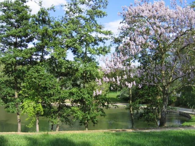 Parc naturel de torcy