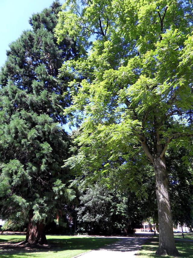 Parcs et Jardins (5)